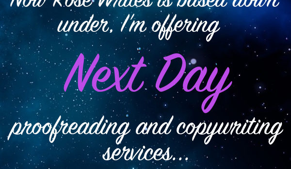 Introducing my Next Day Copywriting Service